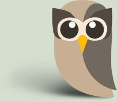 Hootsuite Icon by jasonh1234