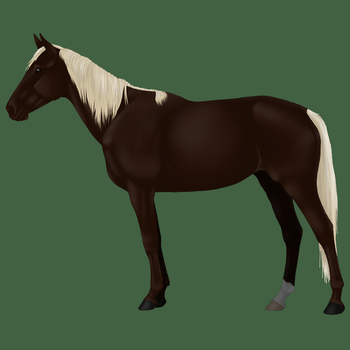 Xarxus' Beautiful Mare by SoulCrystal214