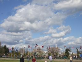 World Flags at Skagit Valley by VoyagerHawk87