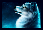 Edderkopp's Space ▲ Fermeture définitive - Page 4 Ice_wolf_by_y_esk-d9b1y7u