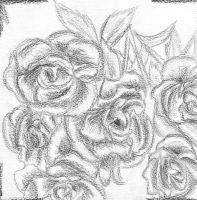 rose3 by 24movements
