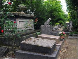 Cemetery of Dogs and Other Domestic Animals - 24 by SUDOR