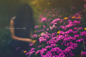 Melodies of a Season's change by Miguel-Santos