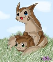 Great day for a Furret by Paku-Chan