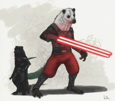 DAC-Opposite Challenge Sith by TruBlueArt