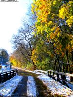 AUTUMN OR WINTER? by magicandbrother