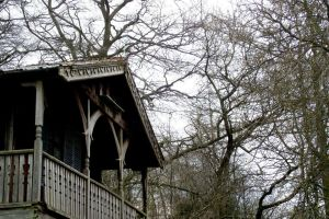 Wooden house lost in the...wood by Maedraws