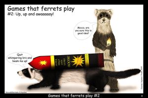 Games that ferrets play 2 by Foxia