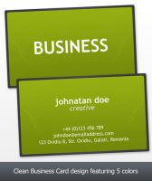 Business Card by snaz