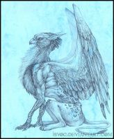 Gryphon Sketch by Isvoc