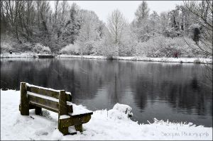 Too cold to sit by Snoepixx-Photography