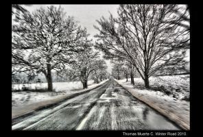 Winter Road 2010 by ThomasMuerte