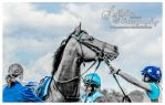 Horse Racing 529 by JullelinPhotography