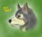 Character sketch - Sgt. Wolf by FuriarossaAndMimma