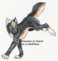 Zowolf-trade WIP by Paperiapina