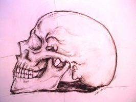 Charcoal Skull by trisquitman