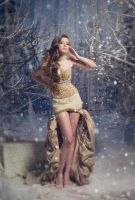 Winter beauty ver1 by DASTPHOTO
