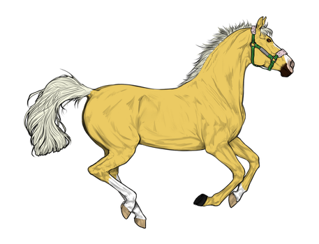 Horse adopt 3 by LoveOfTheHeart69