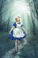 Alice in Wonderland2 by inSOLense