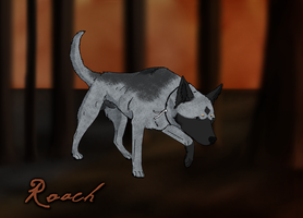 Towards The End -Roach by Hollow-Heaven