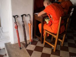 PH_011614_02 by IgorBekker