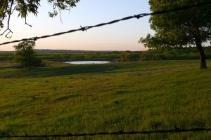 Barbwire Field 2 by MousieDoodles