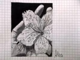 A Flower by xAlisa-chanx