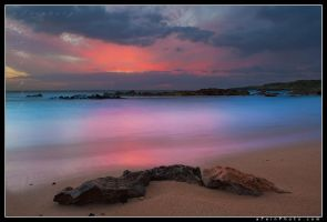 Crimson Transition by aFeinPhoto-com