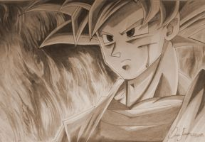 Goku Super Saiyan Level God by Oscarliima