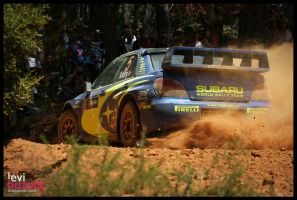 WRC2006 - Solberg by levinet