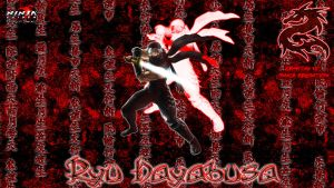 Ninja Gaiden DS WS Wallpaper by omegaarchetype
