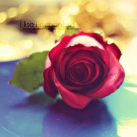 Ever lasting by EliseEnchanted