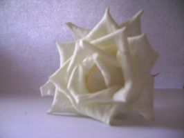 rose03.stock by wet-ground-stock