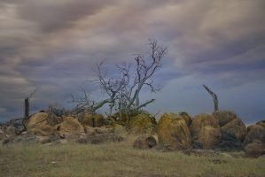 Infrared - Rocks Cooma by Rhyton