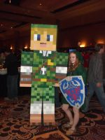 Minecraft Link Cosplay by CharmandersFlame
