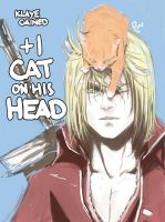 Cat hat by Pharan
