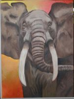African Elephant by pindlekill
