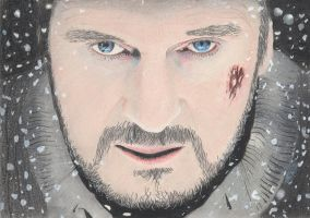 Liam Neeson - The Grey by nobii
