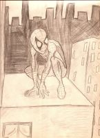 Does whatever a spider can by candlehat