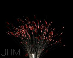 Flamable Flowers by mechanic