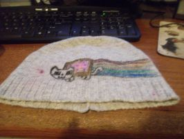 Nyan Cat Hat 2 by Ayleia-The-Kitty