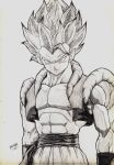 la fusion de goku y vegeta by halleymurray