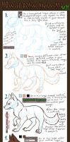 Animal Tutorial V.2 by blizzeon