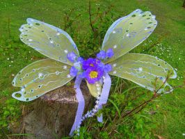 Super fairy wings by Twinkleallday