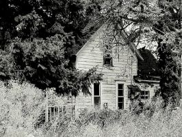 Sweet scent of decay... by wolfcreek50