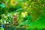 Flower from Danbo by inzanenewbie