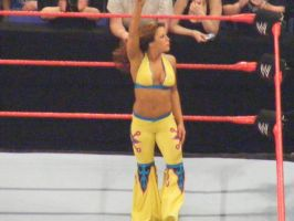 Mickie James the challenger by rtbooker18