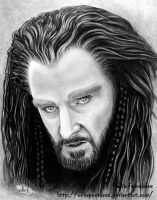 Thorin Oakenshield (The Hobbit) 2 by ochopanteras