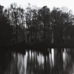 ghosts in the woods by PsycheAnamnesis