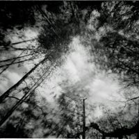 Pinhole-2 by Dreams-Made-Flesh